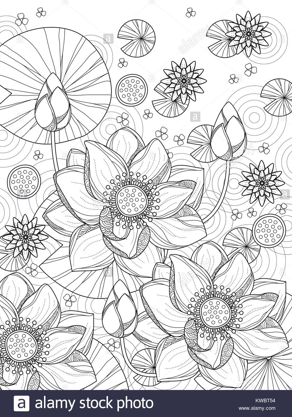 Lotus Flower Decoration Monochrome Stockfotos & Lotus Flower ...