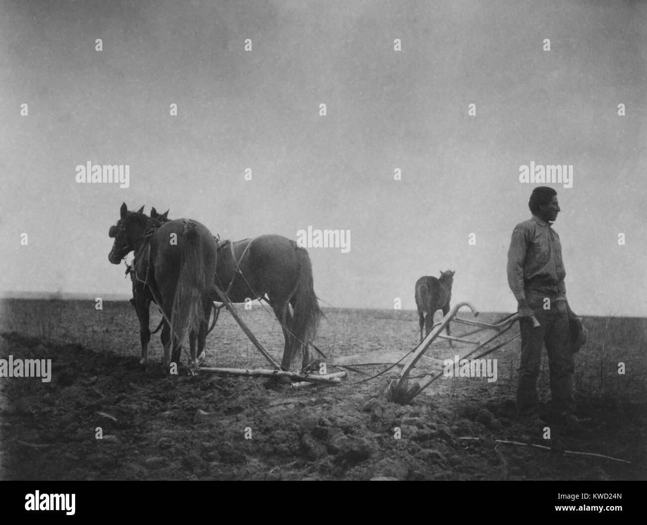 Die Morgendämmerung der Zivilisation, ein Foto von einem amerikanischen Ureinwohner in einem Feld mit einem pferdefuhrwerk Stockfoto