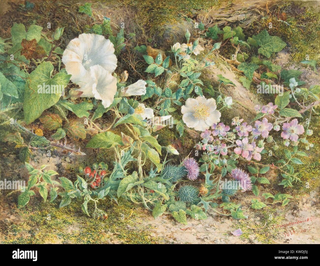 Blume Studie, von John jessop Hardwick, 1866, British Aquarell Malerei. Petunien, wilde Rosen, Disteln und roten Stockbild