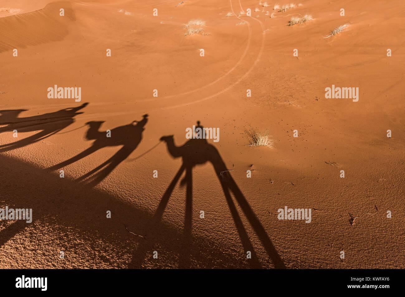 Kamel Schatten auf Sand Dünen während der Kamel Trek in der marokkanischen Sahara. Stockbild