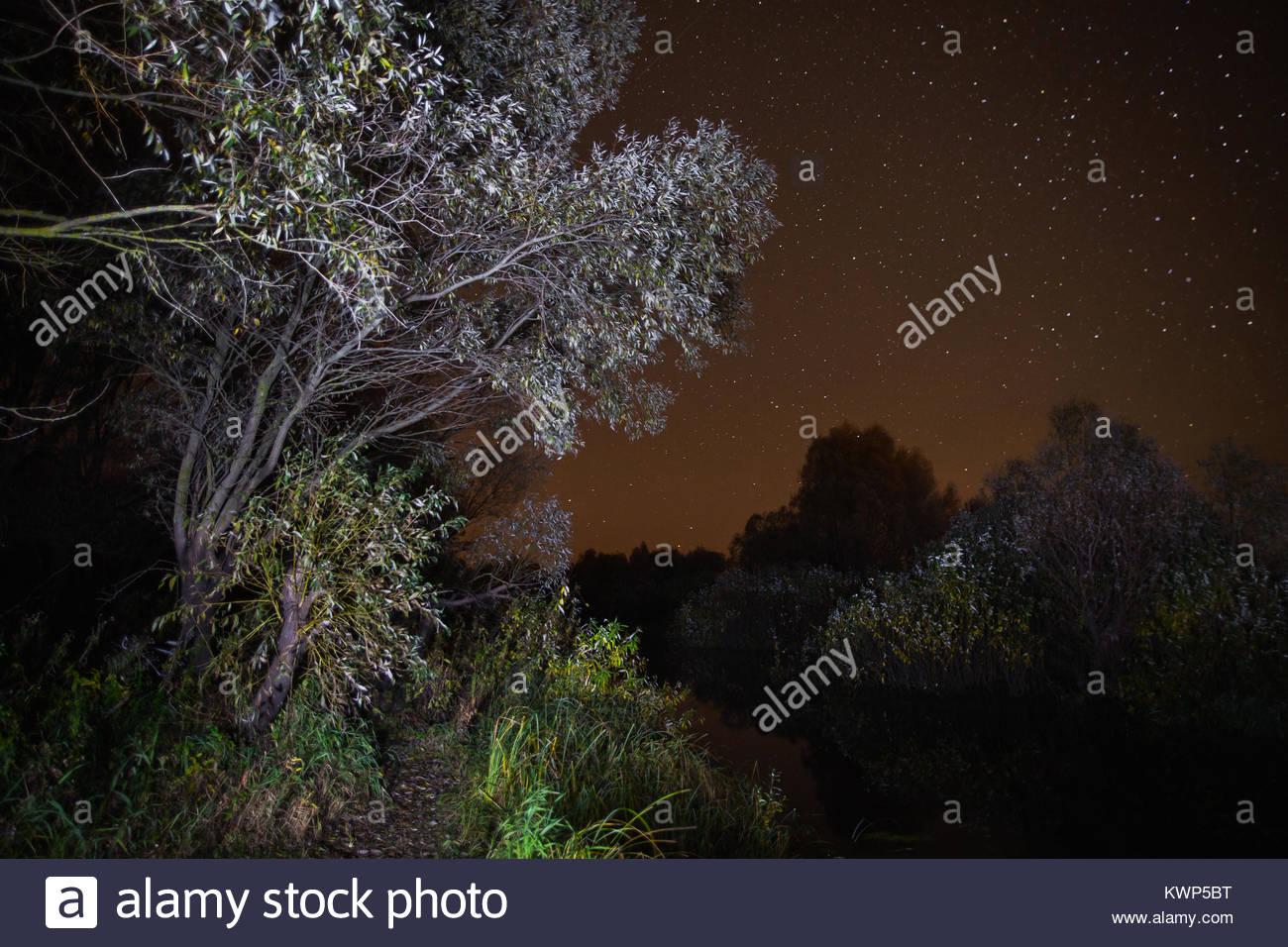 Großartig Sternenklare Nacht Färbung Seite Fotos - Malvorlagen Von ...