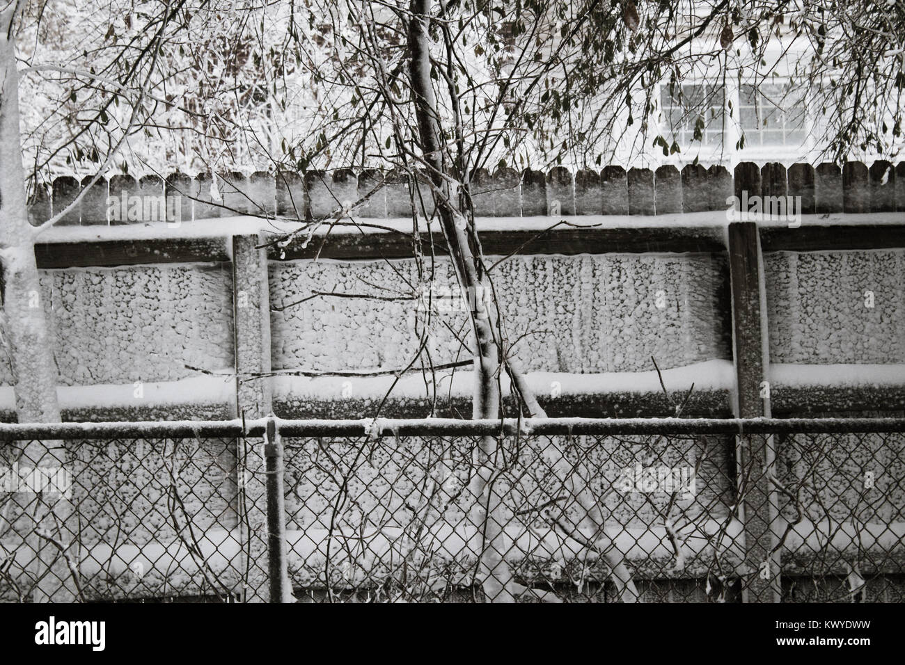 Schneebedeckte Zaun Stockbild