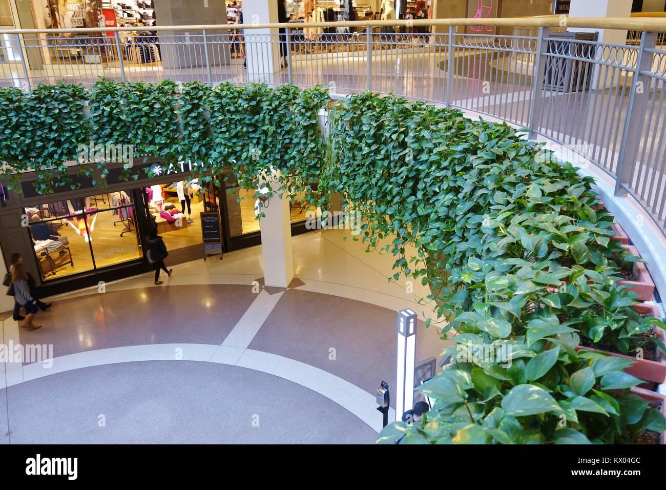 Live grüne Pflanzen, die als natürliche Luftreiniger handeln, in der Mall of America in Minneapolis, Minnesota, Stockbild