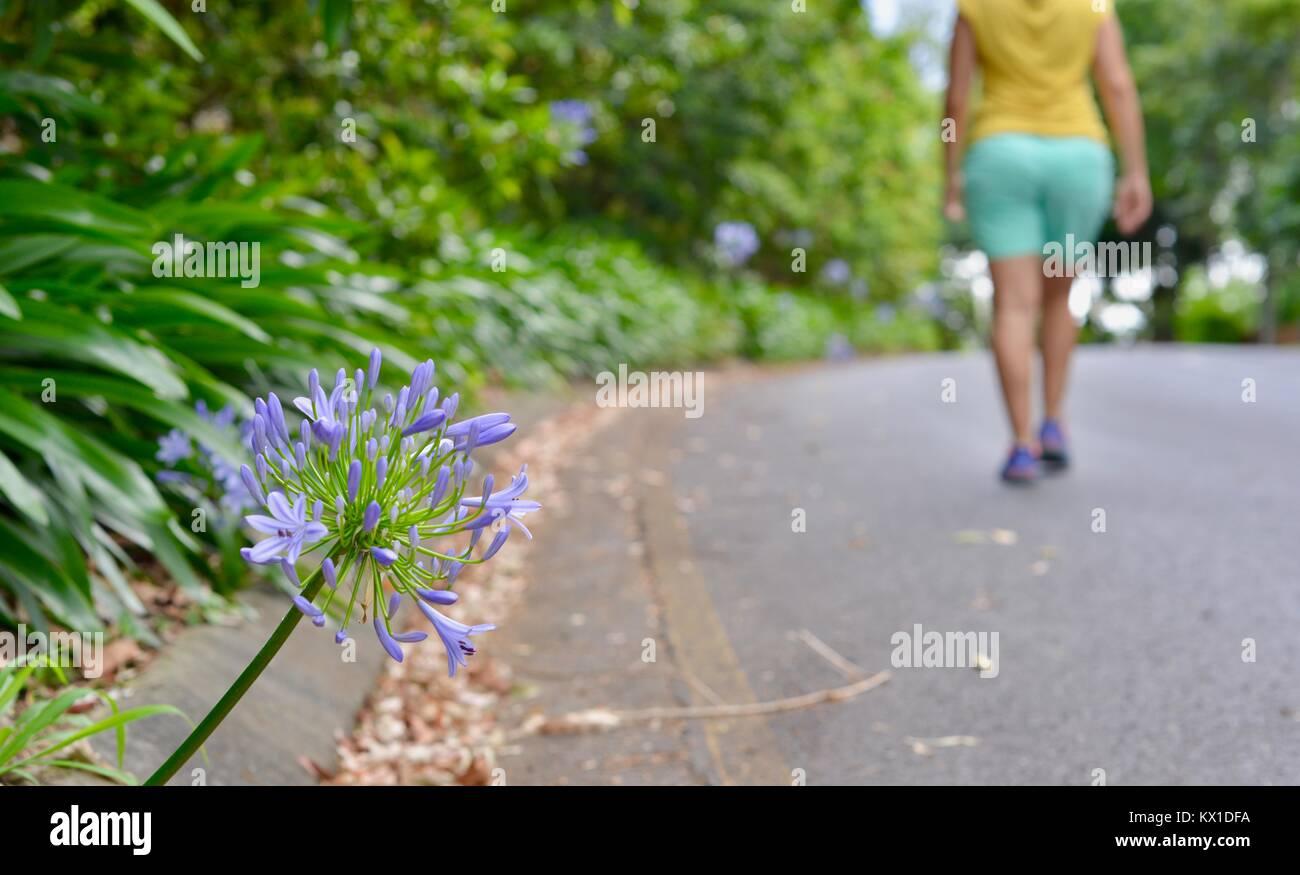 Junge Frauen, die fit und aktiv, Sunshine Coast, Queensland, Australien Stockfoto