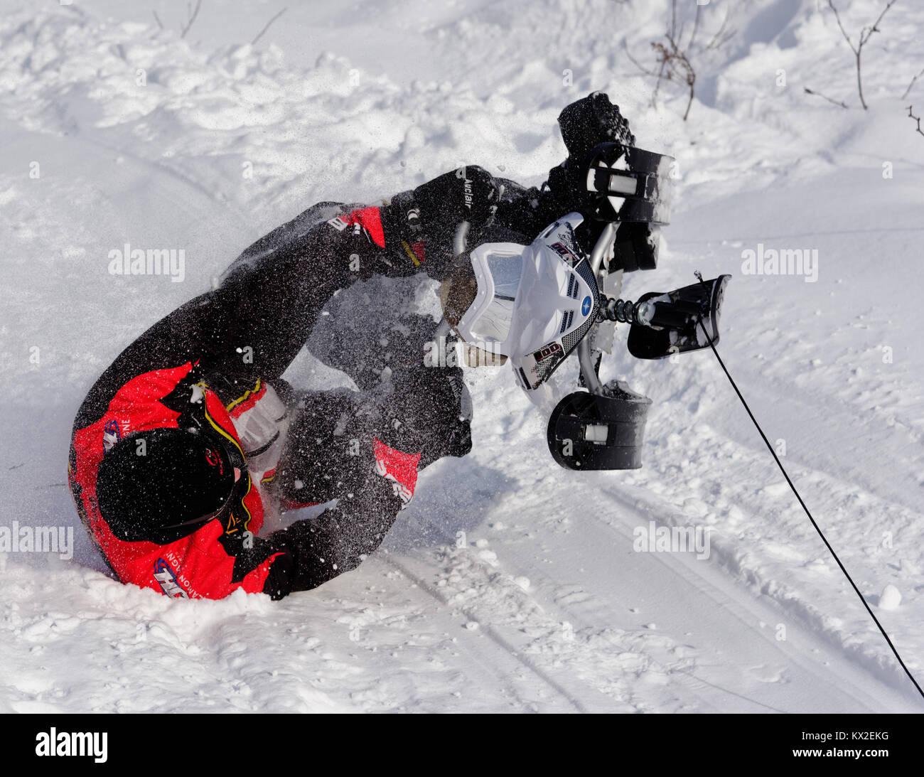 Ein erwachsener Mann stürzt ab seinem Schlitten Stockbild