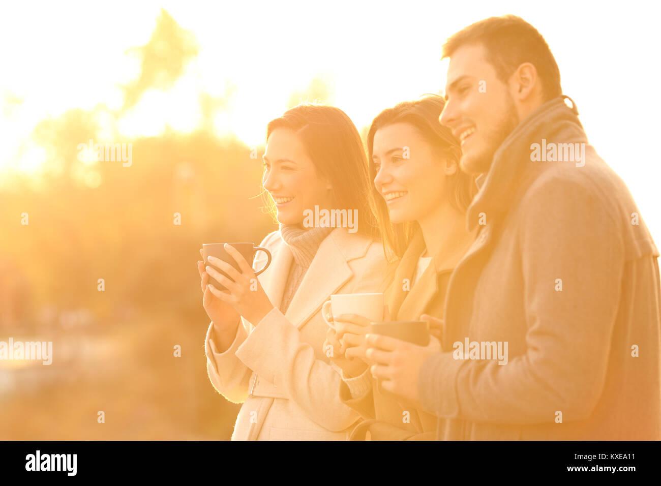 Drei glückliche Freunde Wegschauen bei Sonnenuntergang in einem Park im Winter Stockbild