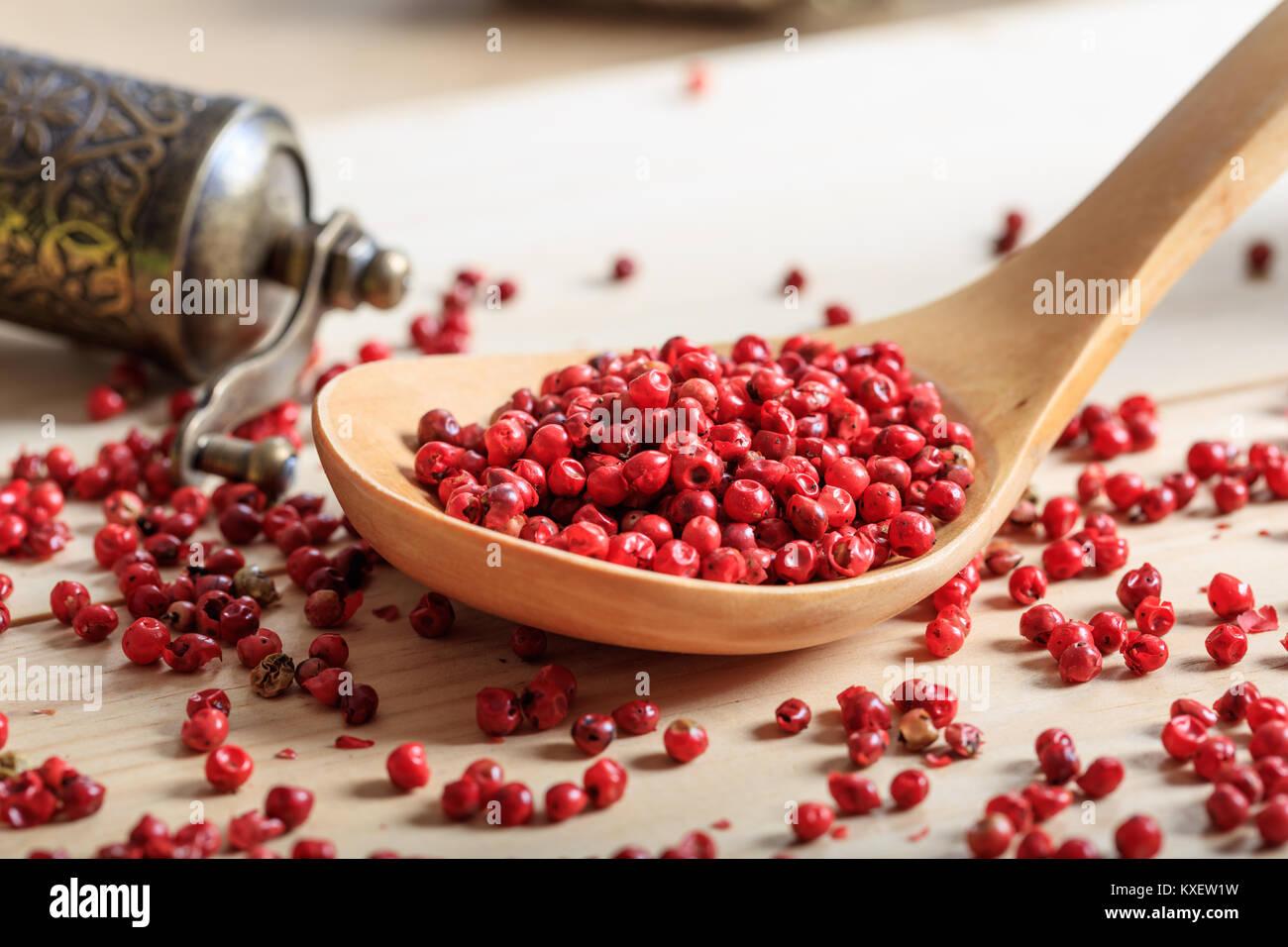 Red Pepper Samen in einem Löffel aus Holz Stockfoto