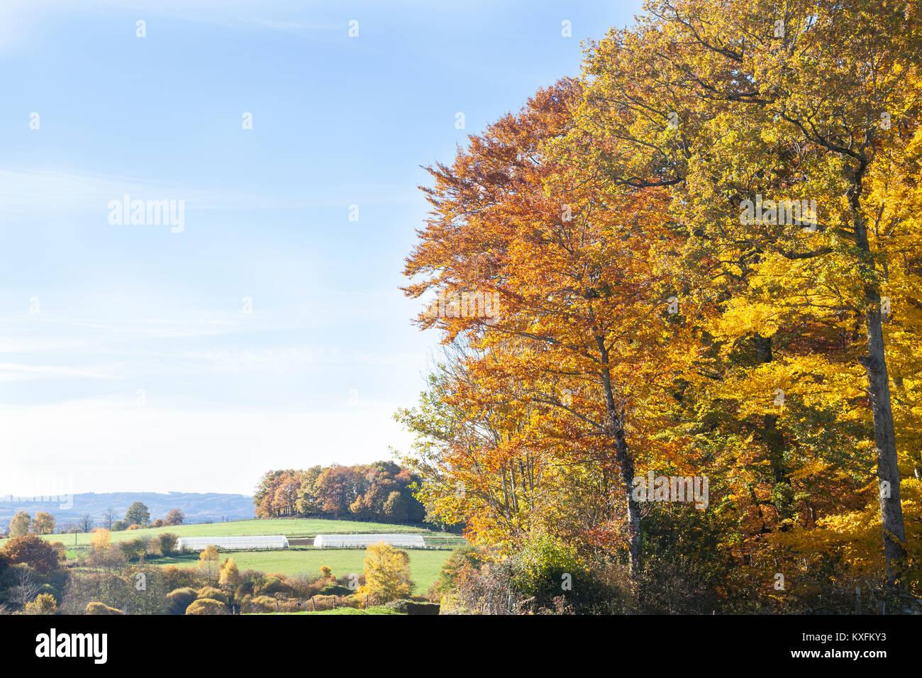 Creuse, Nouvelle-Aquitaine, Frankreich, Landschaft im Herbst mit bunten Buche und Misty rolling hills Stockbild