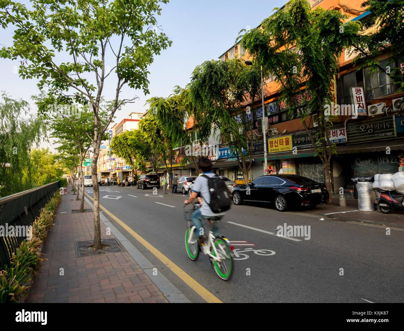 Seoul, Südkorea. Der Mann mit dem Fahrrad auf einer kleinen Straße in der Nähe des Cheonggyecheon Stockbild