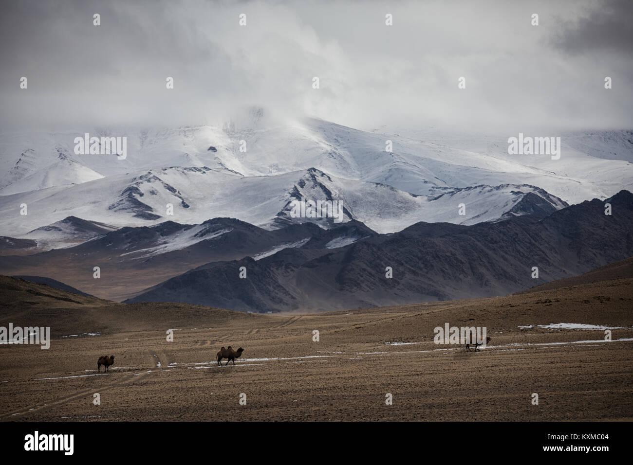 Mongolei Winter Lake Snowy Mountains bewölkt Kamele wiesen Steppen der Mongolei Stockbild