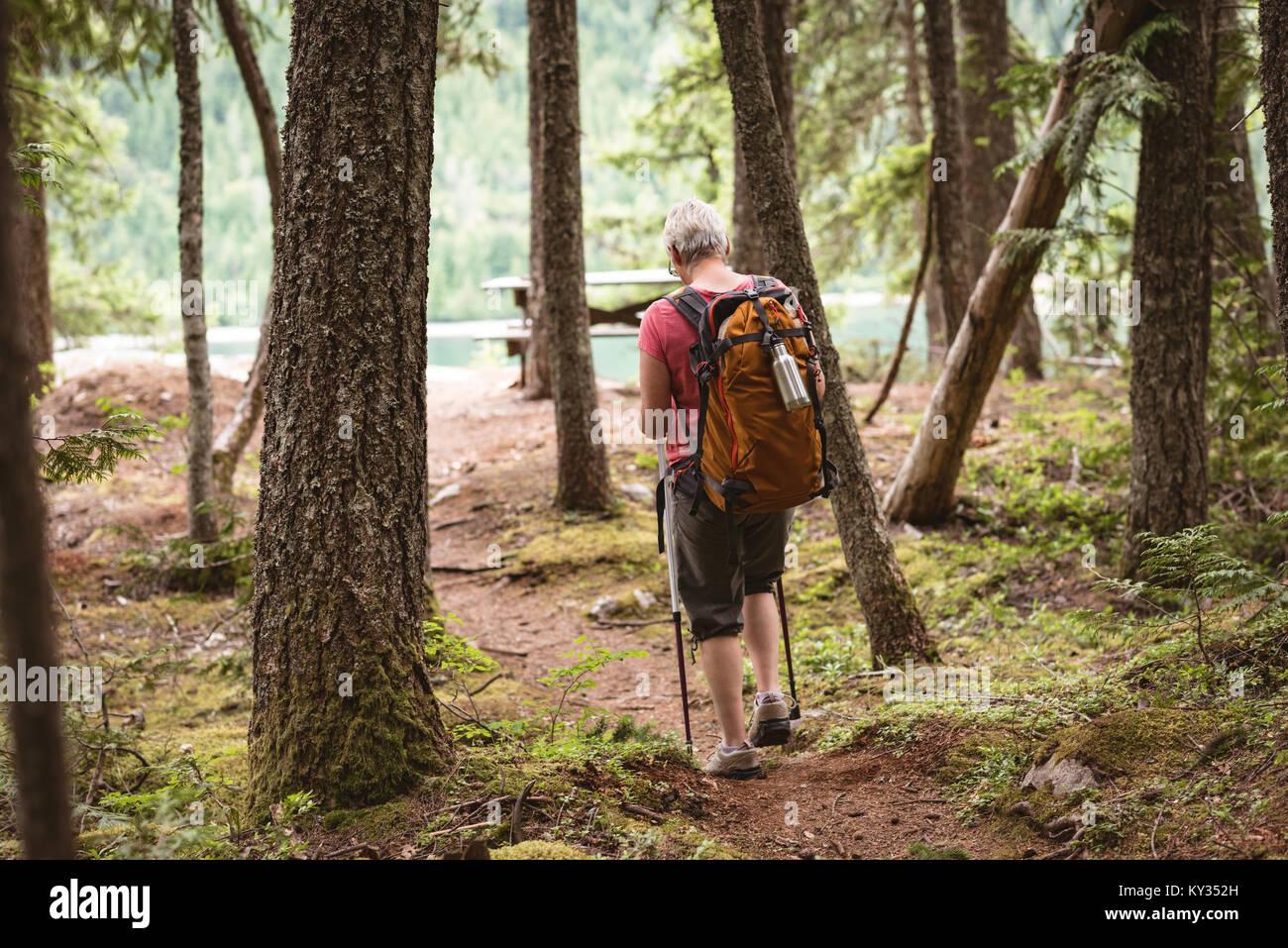 Reife Frau Wandern im Wald Stockbild