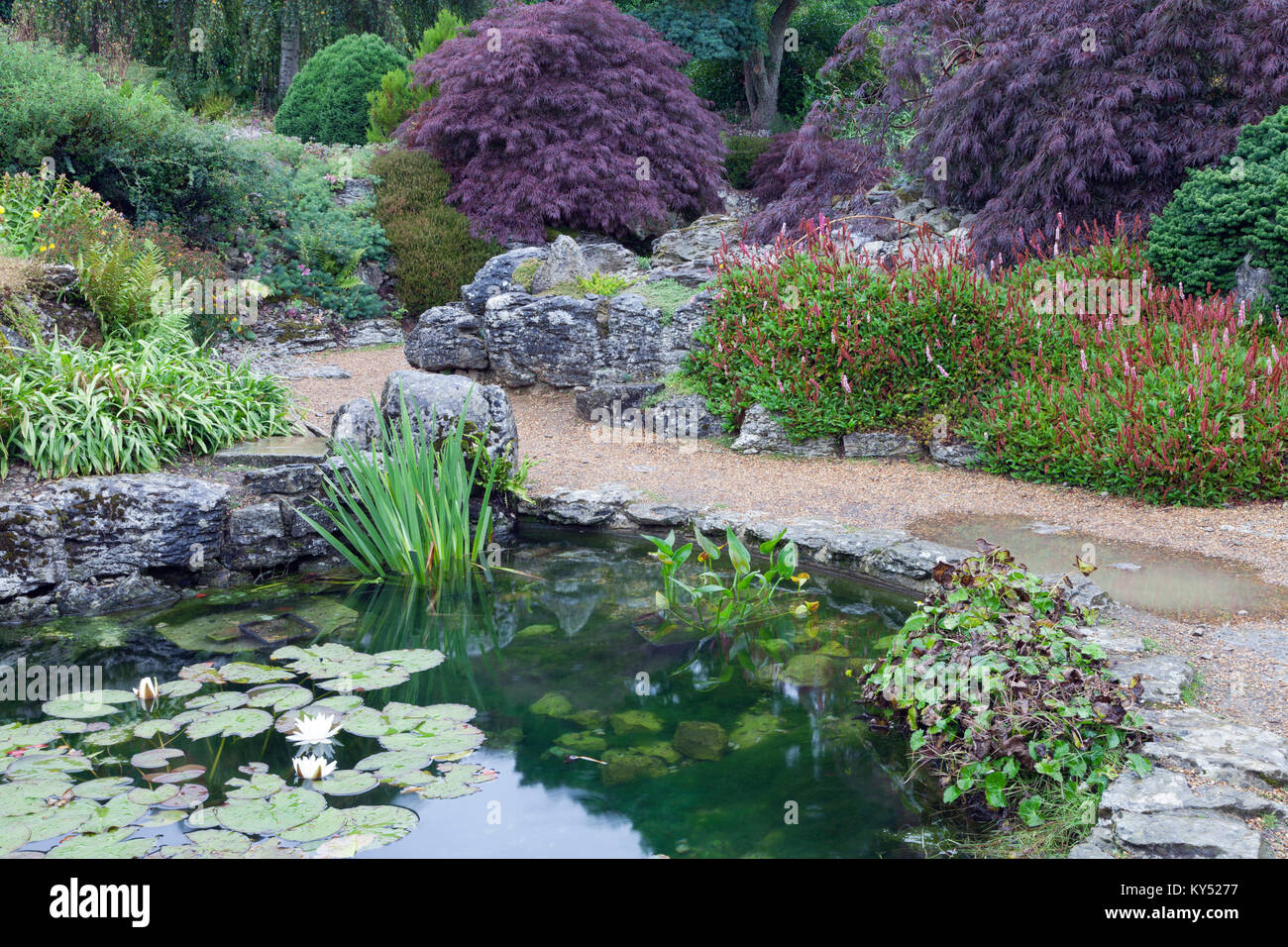 rockery pond stockfotos rockery pond bilder alamy. Black Bedroom Furniture Sets. Home Design Ideas