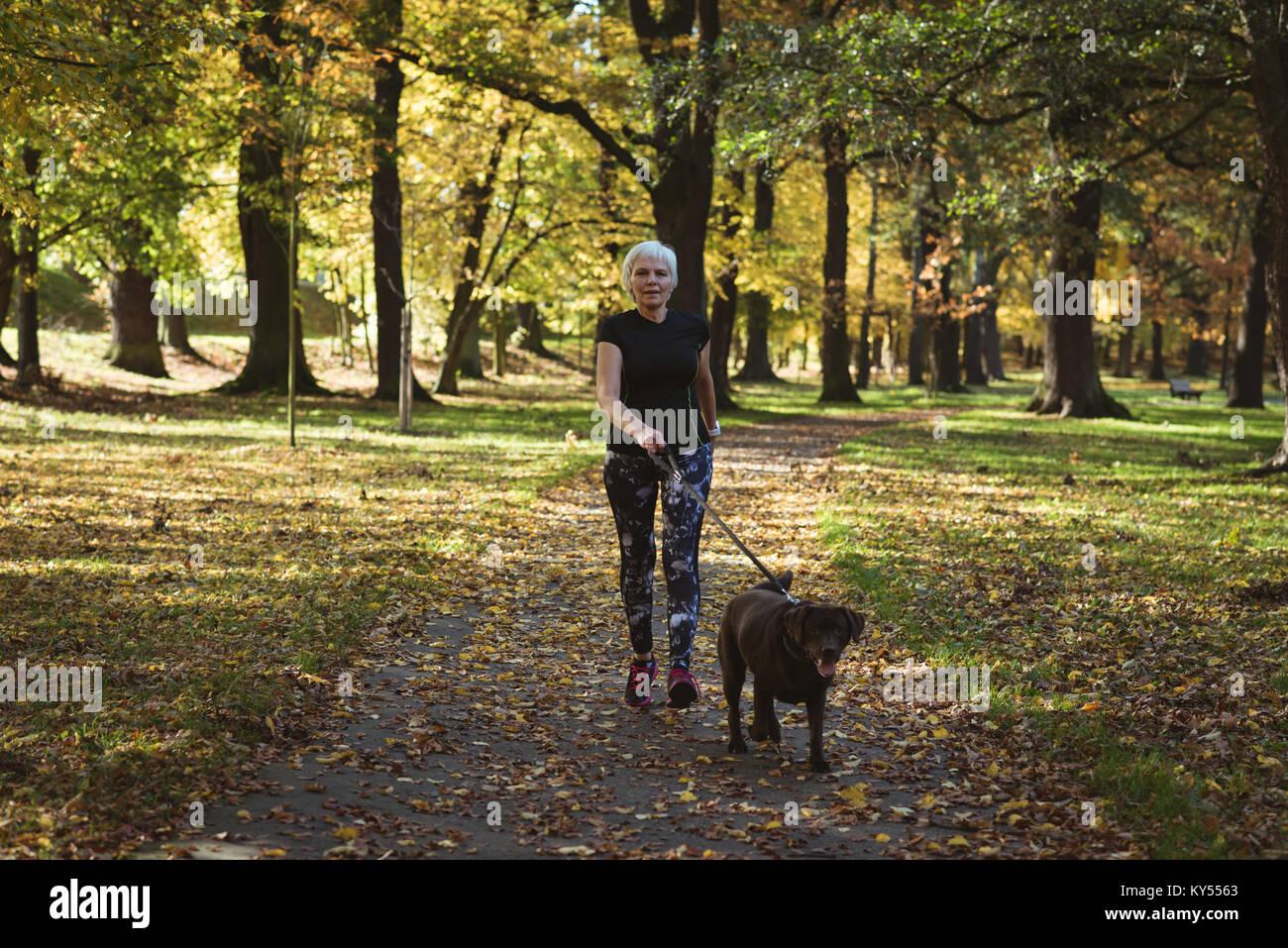 Ältere Frau zu Fuß in den Park mit Ihren Hund Stockbild