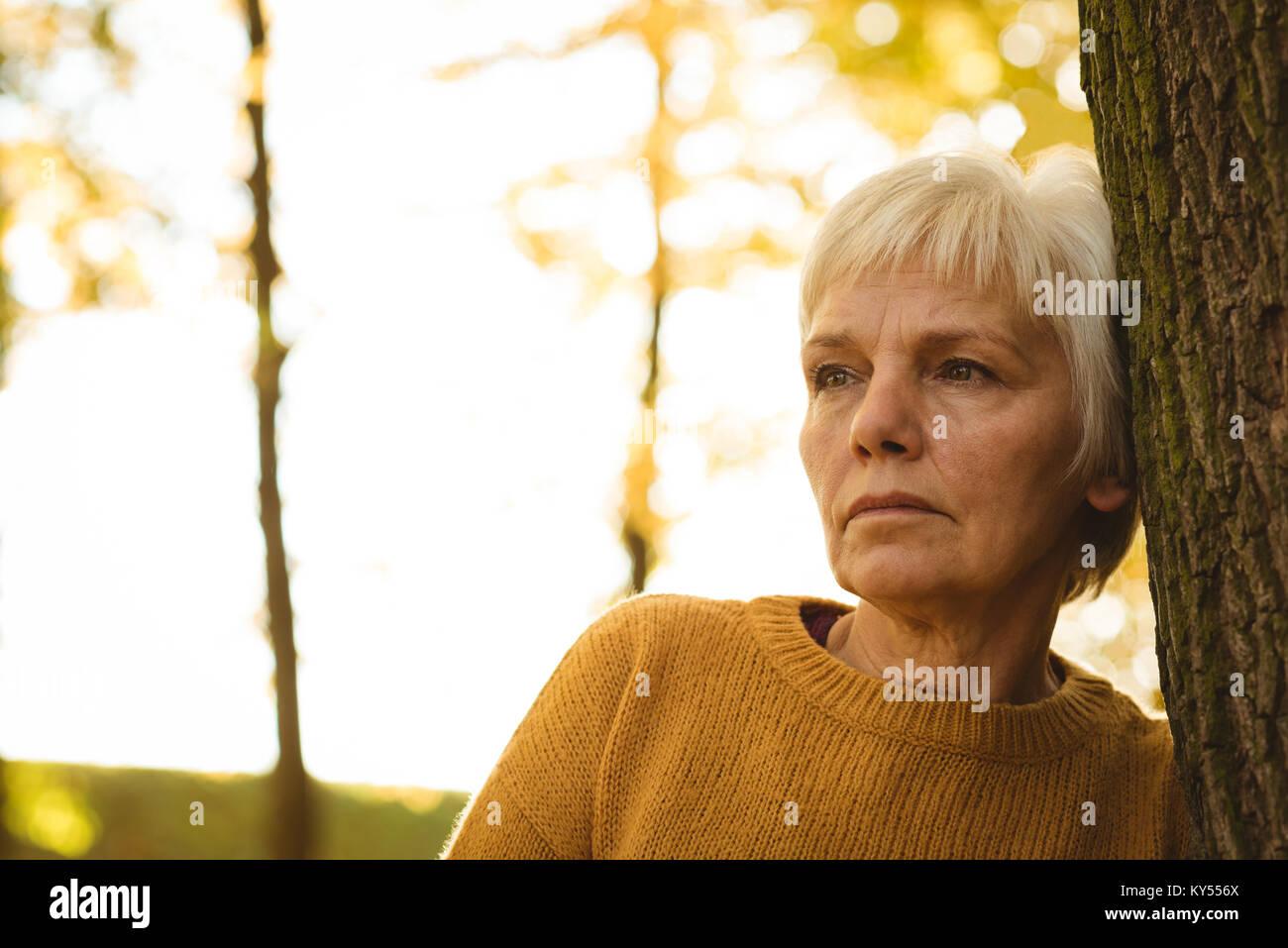 Nachdenklich senior Frau lehnte sich auf Baumstamm in den Park an einem sonnigen Tag Stockbild