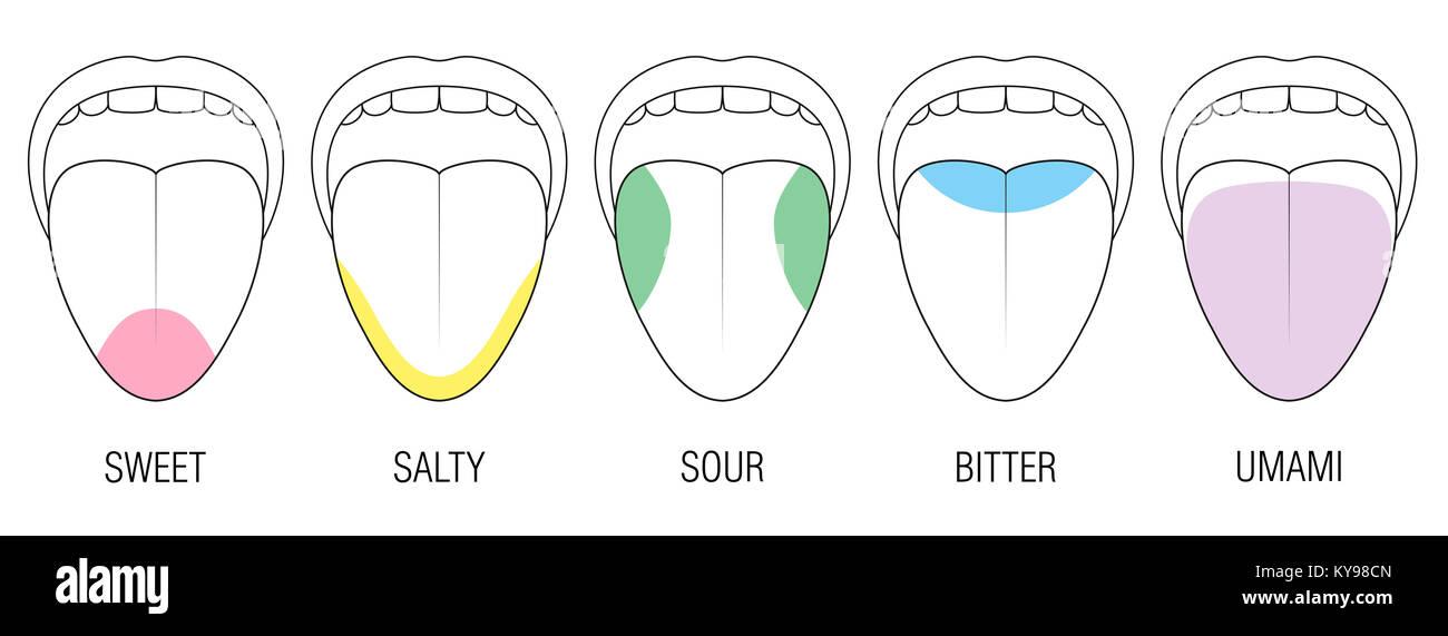 Tongue Taste Bitter Stockfotos & Tongue Taste Bitter Bilder - Alamy