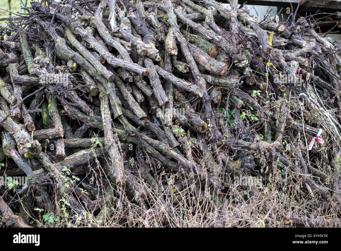 Alte Rebe stocks Schneiden und Stapeln Stockbild