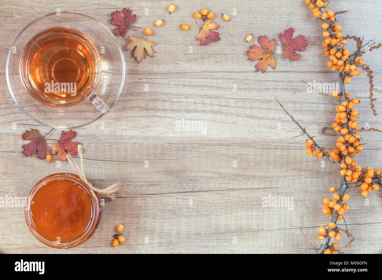Herbst gesunde warme Getränke Konzept. Zweig der gemeinsamen ...
