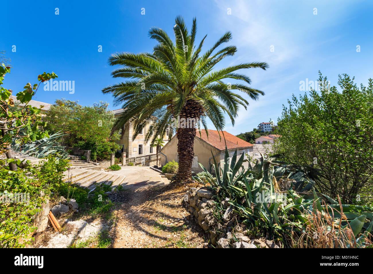 Sommer auf der Insel Iz, Kroatien Stockbild