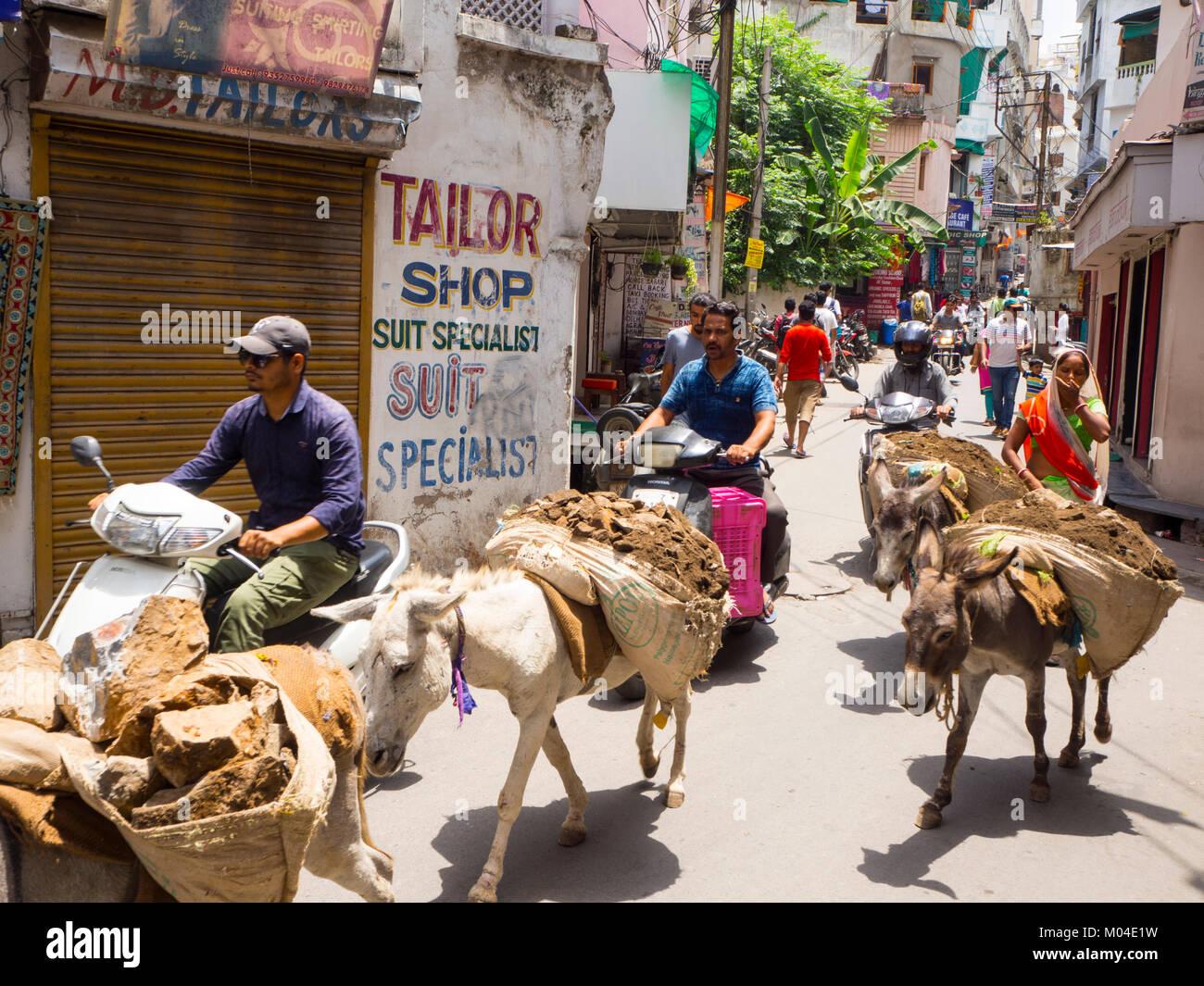 Ein buntes Bild des Alltags in einer indischen Stadt - der Transfer von Baustoffen mit Eseln Stockbild
