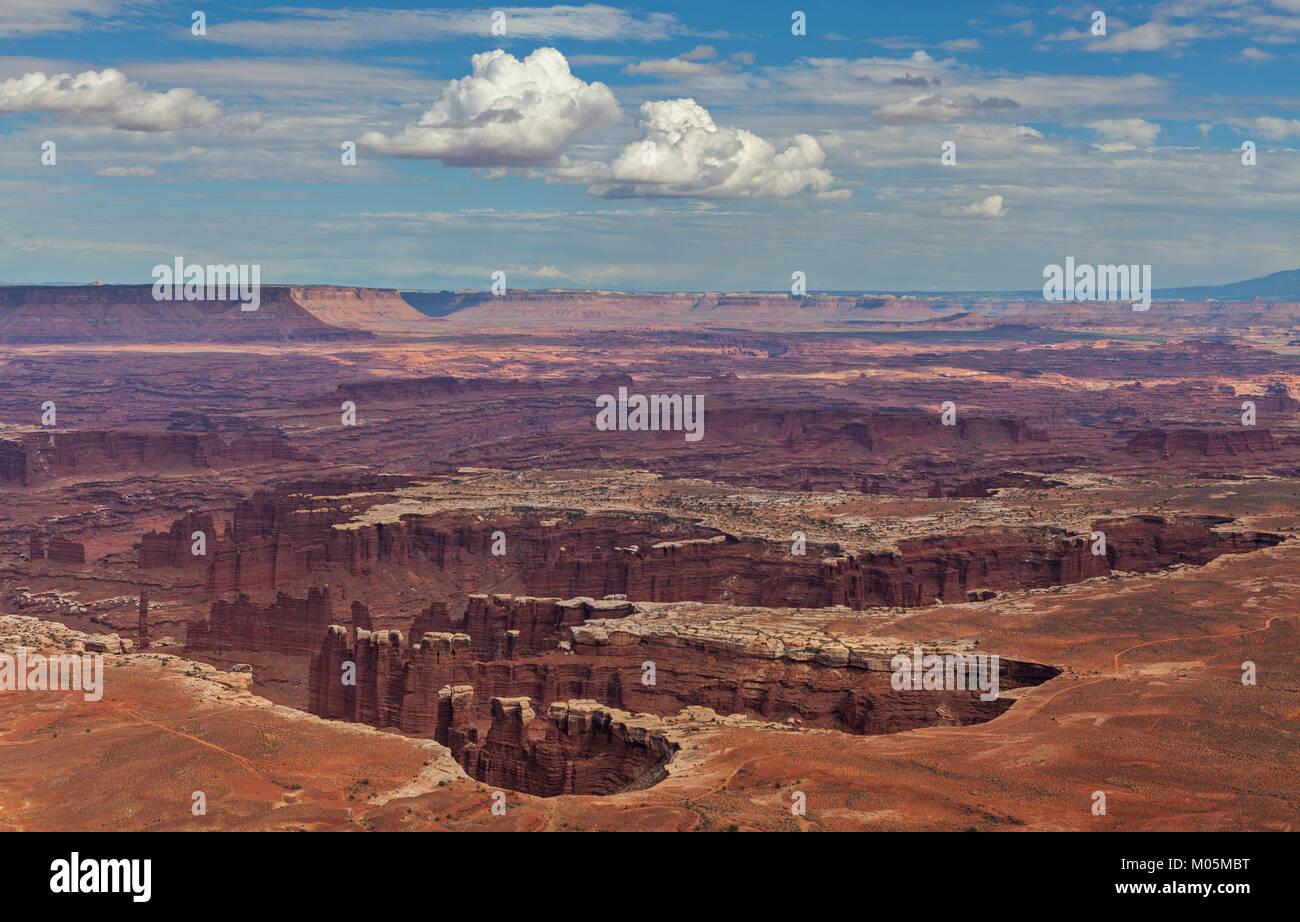 Ein Blick auf die Grand View Point Blicken in den Canyonlands National Park in Utah. Stockbild