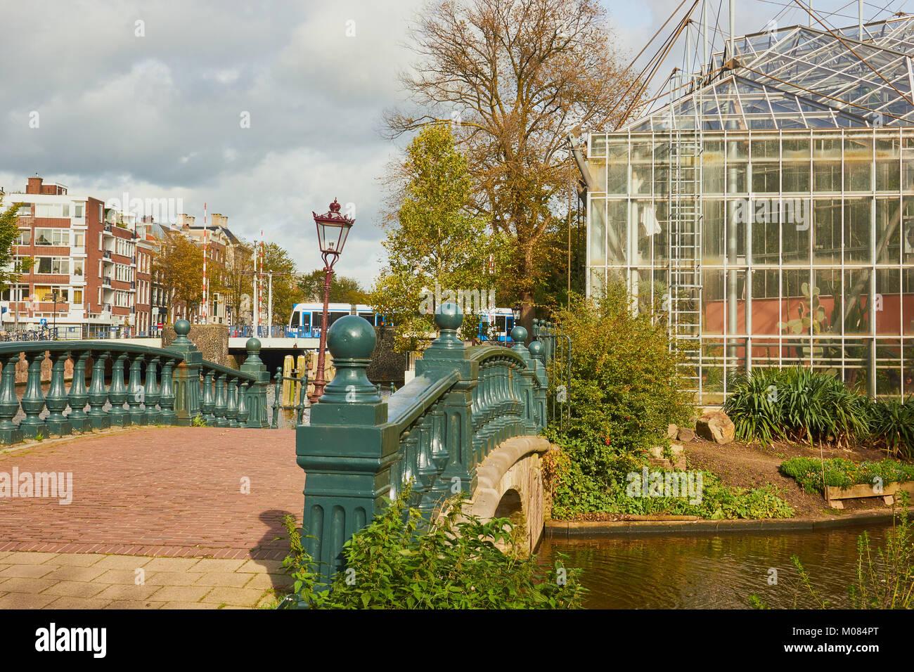 Hortus Botanicus Botanischer Garten Plantage Amsterdam