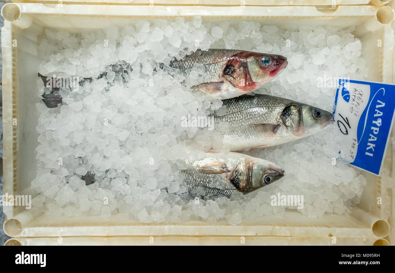 Fischgeschäft in den Parks von Rethimnon, Fische in Eis, Rethymno, Europa, Griechenland, Kreta, Rethymno, Europa, Stockbild
