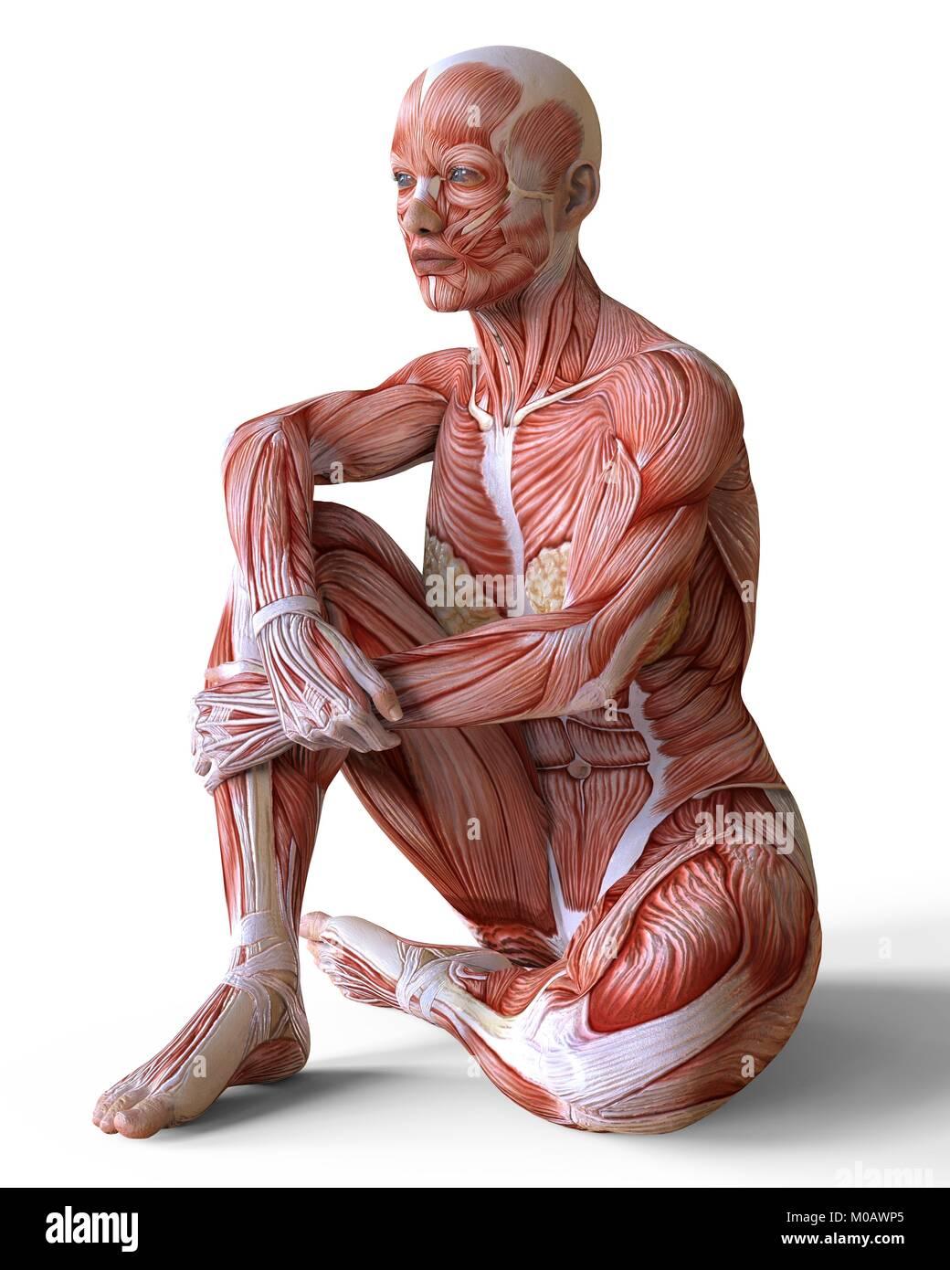 Fantastisch Haut Tag Anatomie Ideen - Menschliche Anatomie Bilder ...