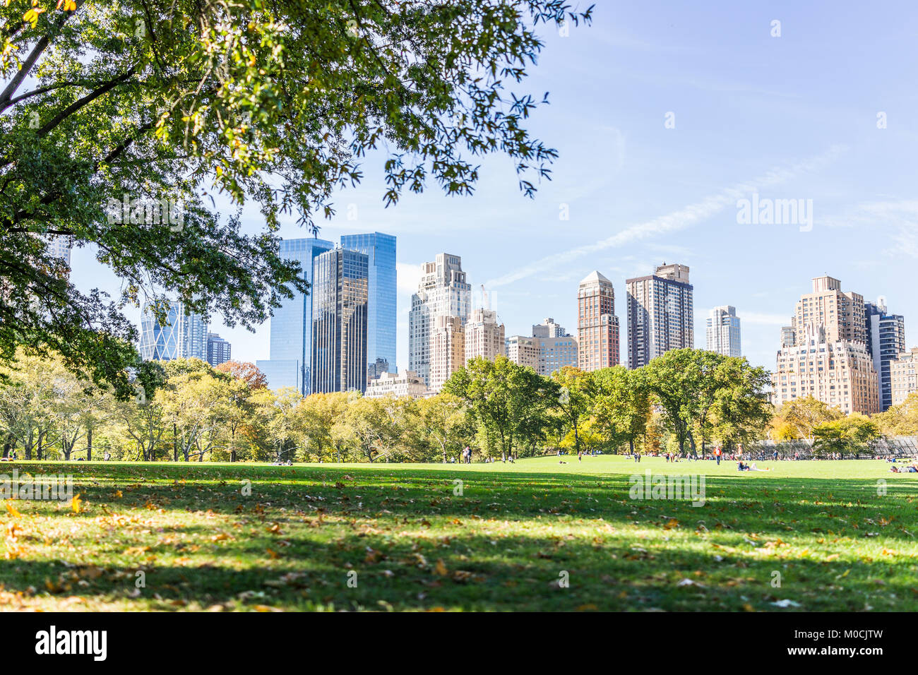 manhattan nyc gro en wiese im central park in new york city mit menschen zu fu auf der gr nen. Black Bedroom Furniture Sets. Home Design Ideas