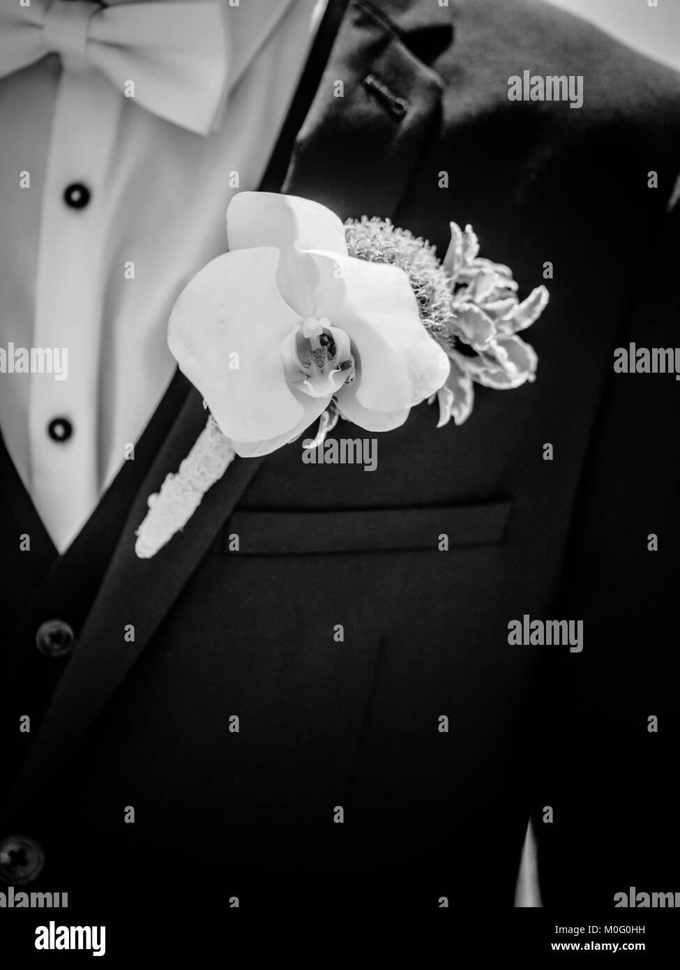 Hochzeit Anstecker Auf Klage Der Brautigam Stockfoto Bild