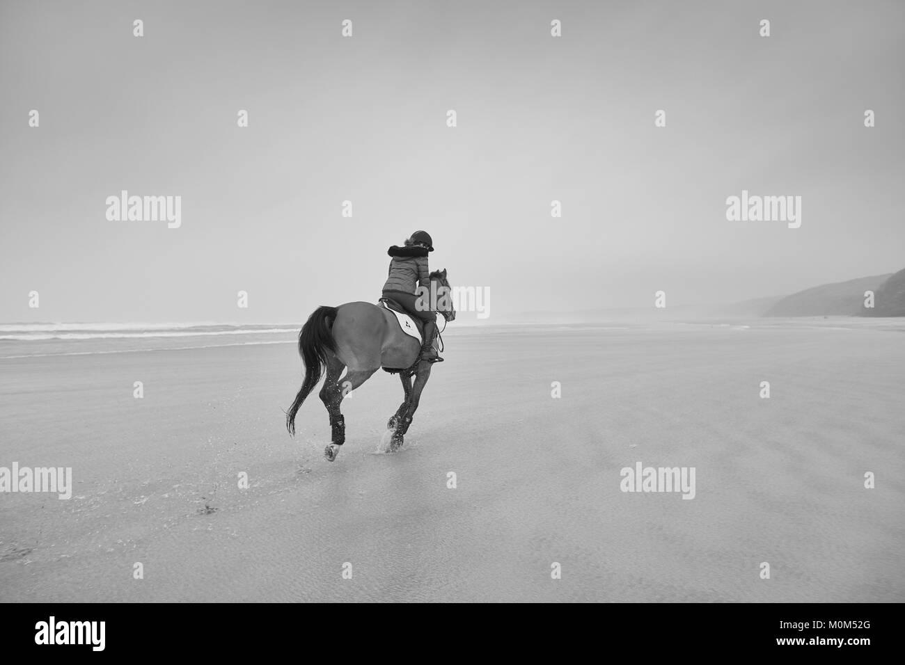 Pferd Reiter von der Kamera entfernt, der Strand bei Ebbe reiten. Schwarz/Weiß-Bild mit einem verdeckt Horizont Stockbild