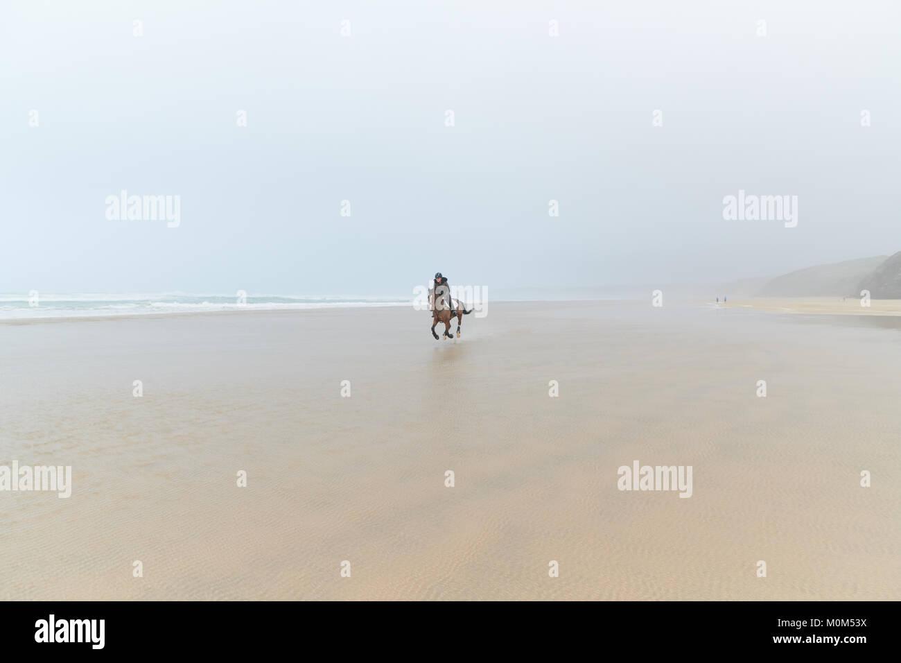 Pferd Reiter reiten auf die Kamera aus der Entfernung über die Ebbe. Schöne Mischung am Horizont mit dem Stockbild