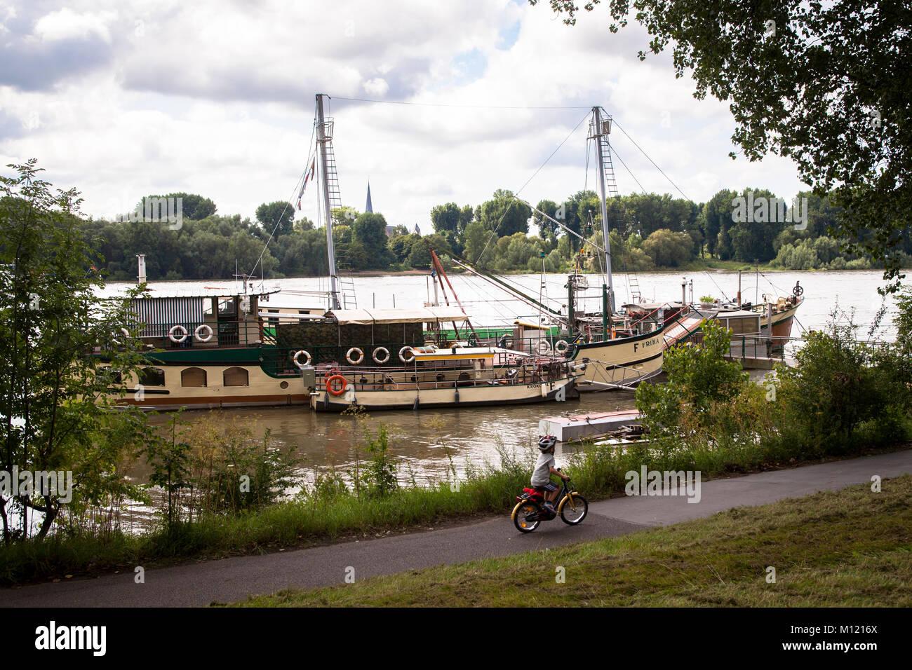 Deutschland, Köln, alte Schiffe am Ufer des Rheins im Ortsteil Weiss. Deutschland, Koeln, alte Schiffe am Rheinufer Stockbild