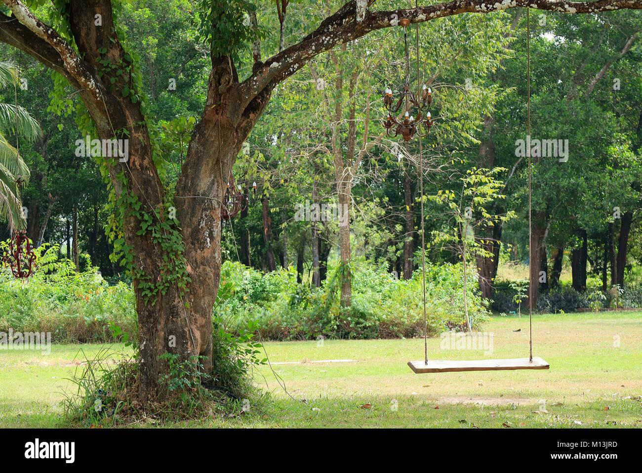 wooden swing tree stockfotos wooden swing tree bilder alamy. Black Bedroom Furniture Sets. Home Design Ideas