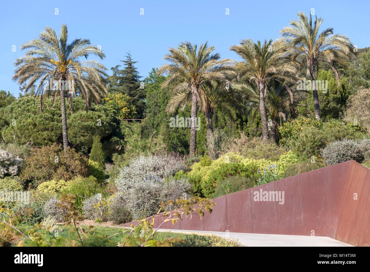 Botanischer Garten Park Montjuic Barcelona Stockfoto Bild