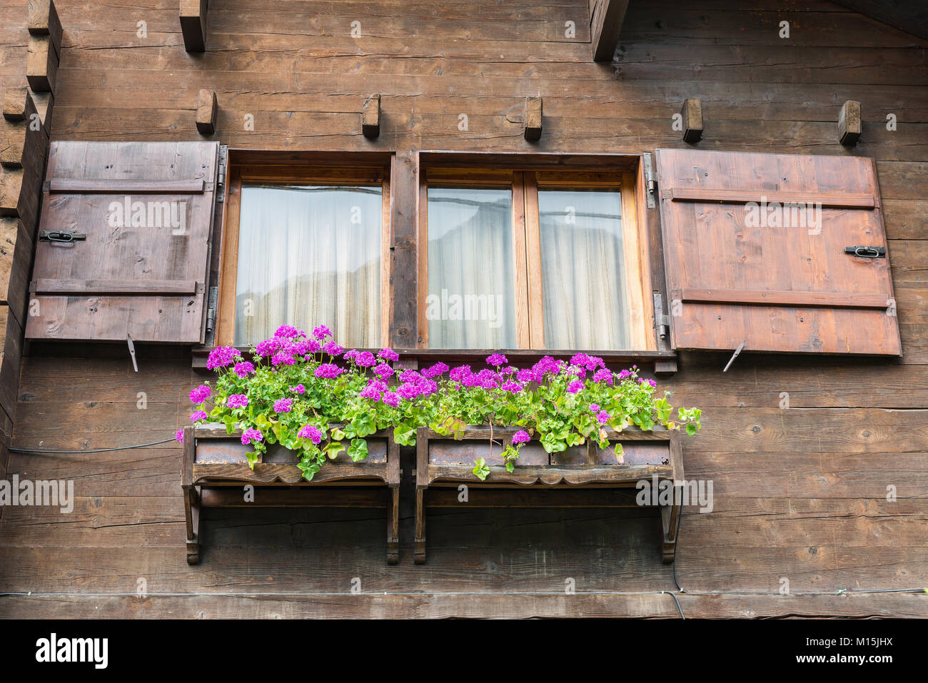 typische fenster mit blumen von einem chalet aus holz auf die alpen fassade eines mountain haus. Black Bedroom Furniture Sets. Home Design Ideas