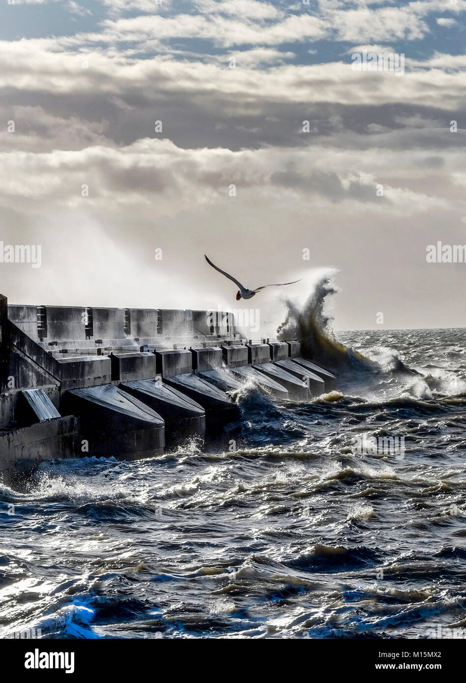 Dramatische stürmischen Meer gegen Brighton Marina schwarz Hafenmauer, Gischt und Wellen hoch in die Luft zu Stockbild