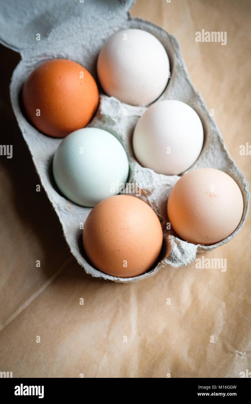 Eggs A Blue Cardboard Stockfotos & Eggs A Blue Cardboard Bilder - Alamy