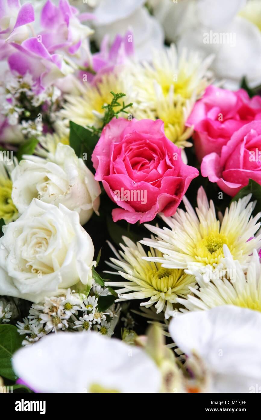 Hochzeit Blume Hintergrund Rosa Und Weisse Blume Stockfoto Bild