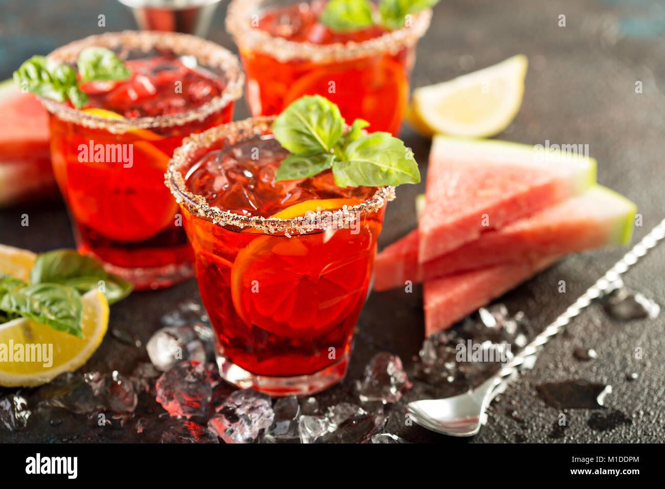 Citrus Wassermelone und Basilikum Margarita Stockbild