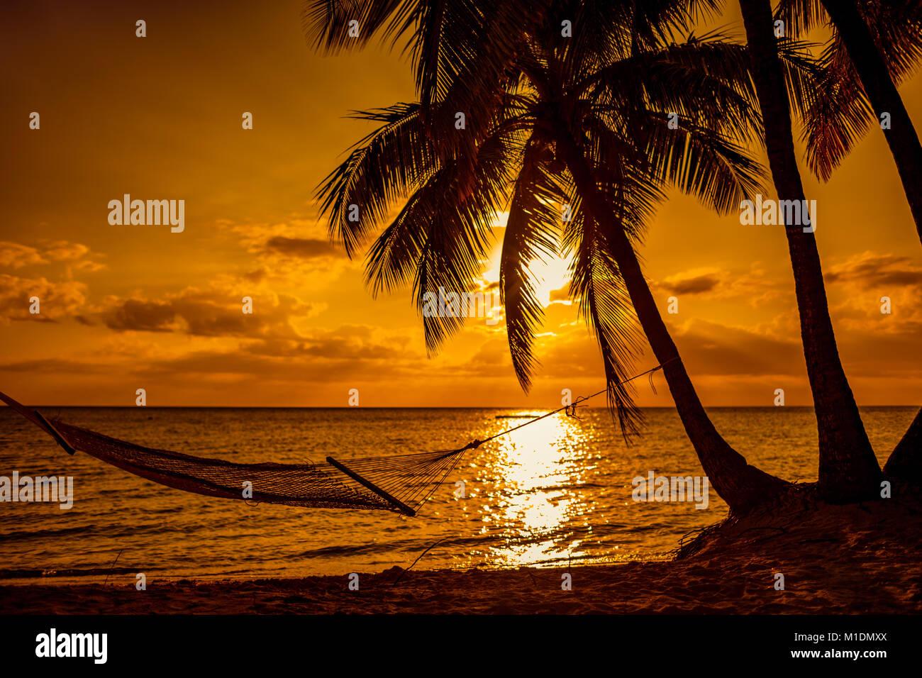 silhouette von h ngematten und palmen an einem tropischen strand bei sonnenuntergang fidschi. Black Bedroom Furniture Sets. Home Design Ideas