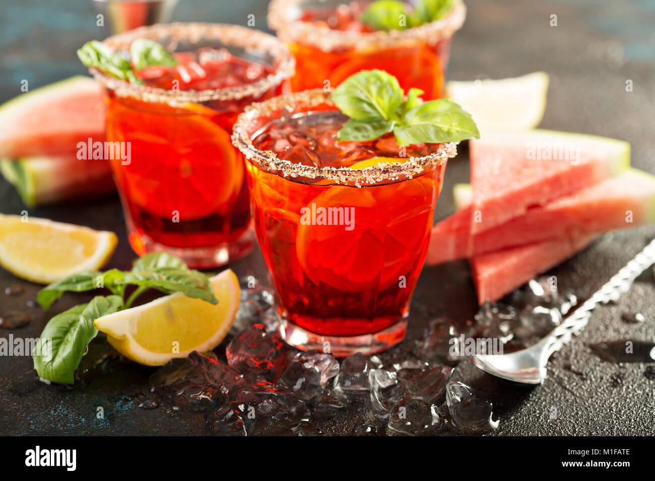 Erfrischende kalte Citrus Wassermelone und Basilikum Margarita Stockbild