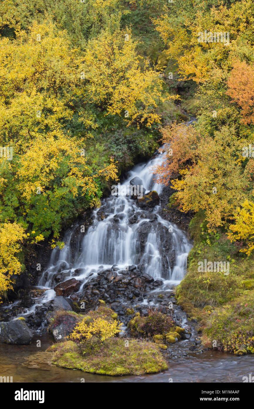 Wasserfall Hraunfossar im Westen von Island Stockbild