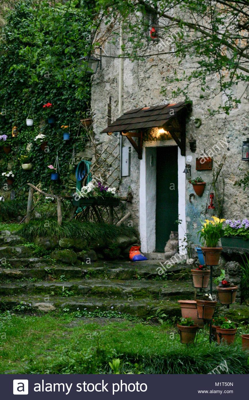 Reizendes Altes Steinhaus Mit Garten In Den Wäldern Im Norden Von Italien,  Katze Sitzt Vor Der Tür