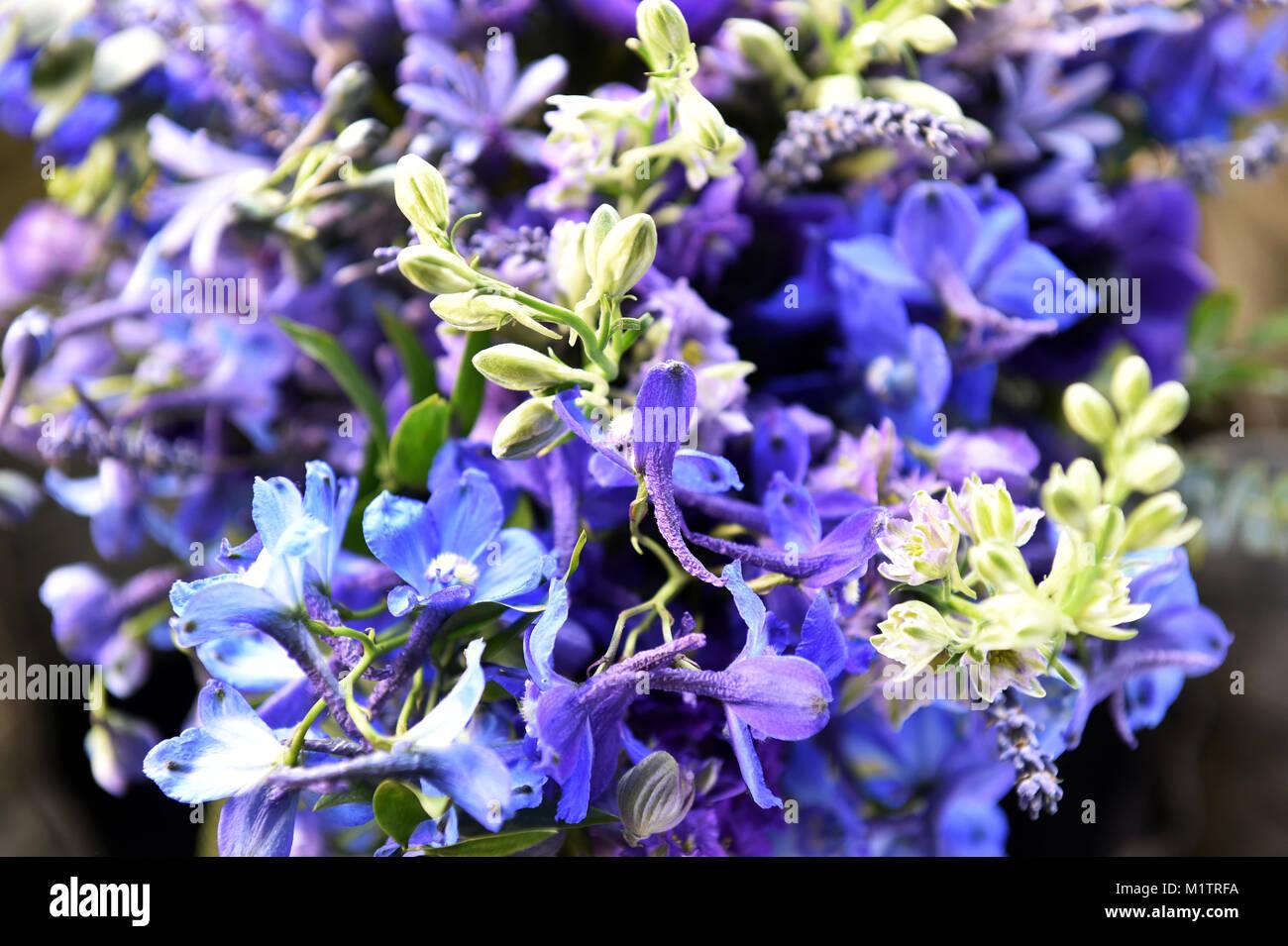 Blau Und Lila Blumen In Einer Grossen Hochzeit Bouquet Stockfoto