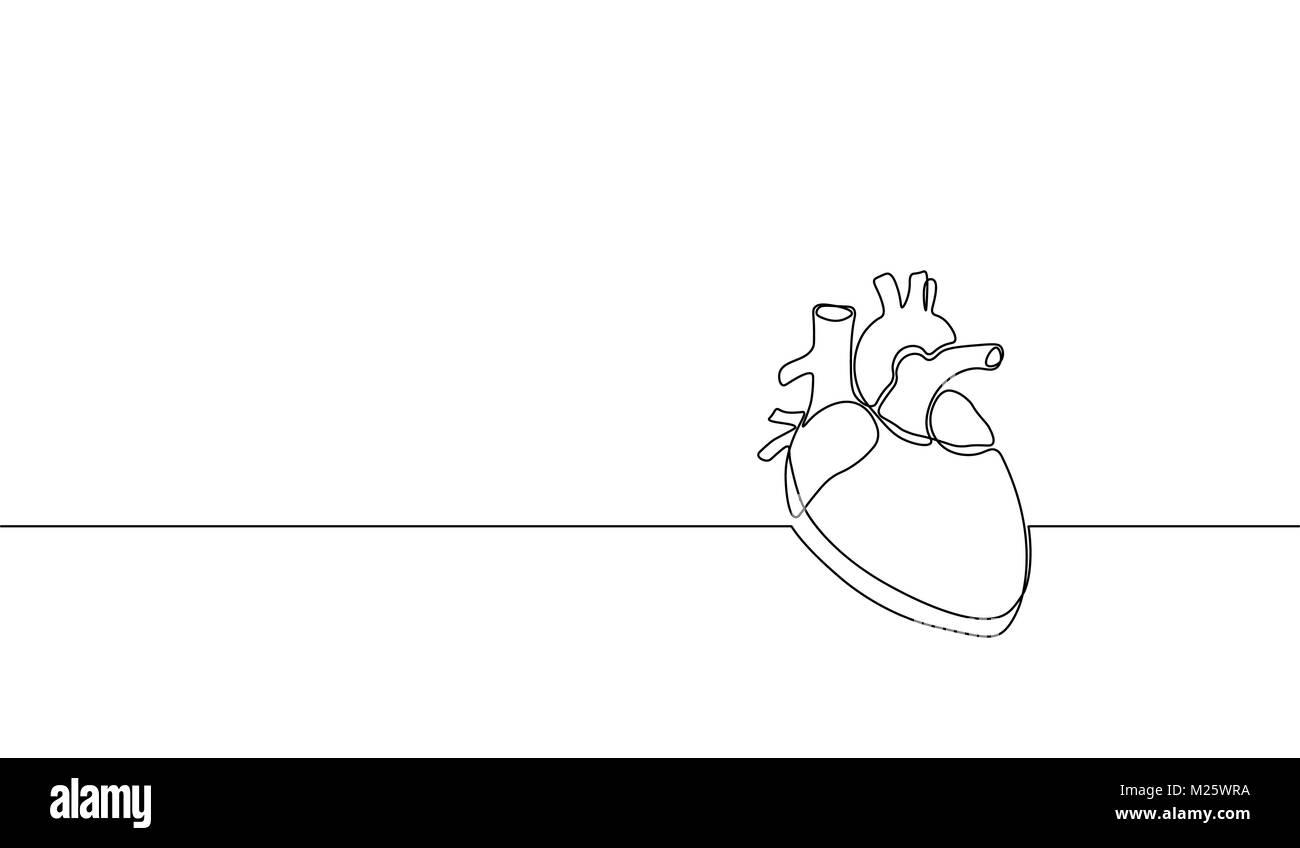 Eine durchgehende Linie kunst anatomischen menschlichen Herzen ...