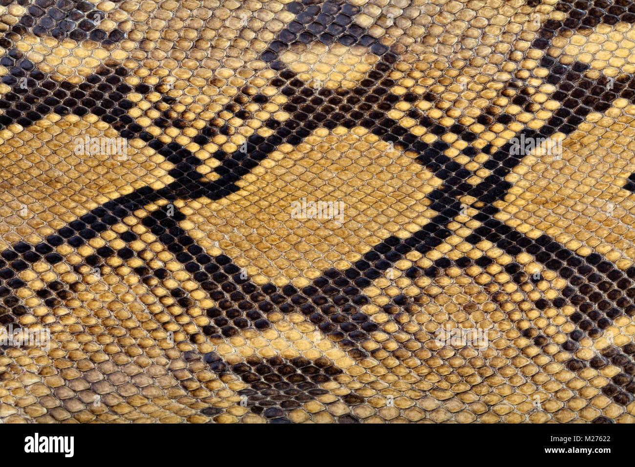 Vintage Handtasche aus echtem Schlangenleder Stockbild