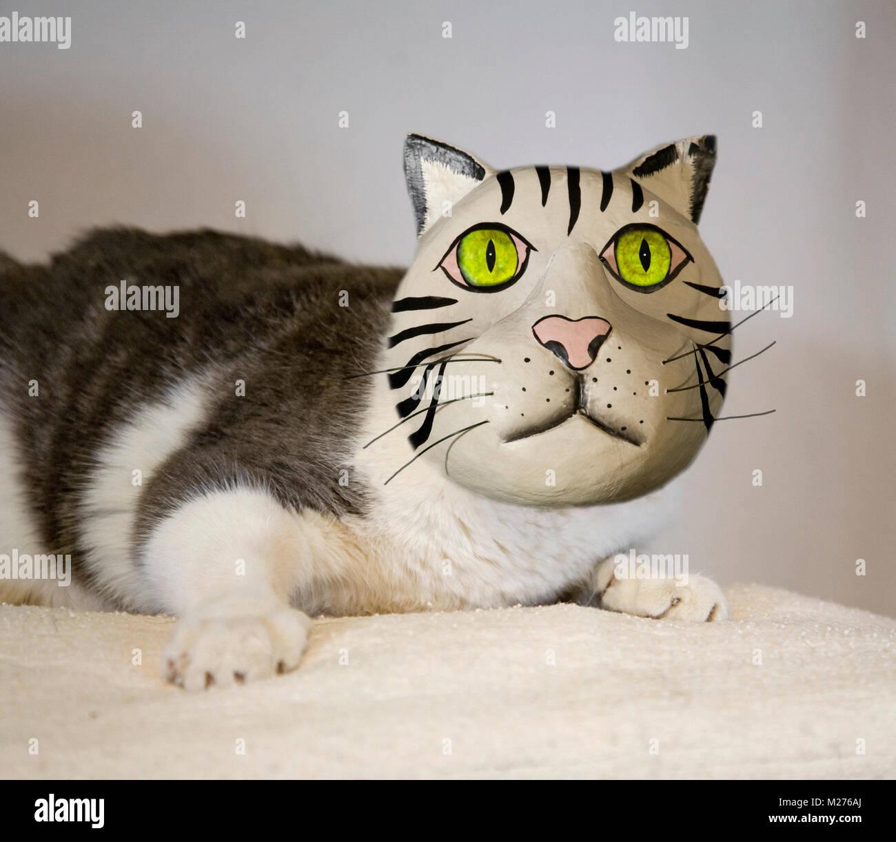 Ziemlich Katze 5 Draht Diagramm Zeitgenössisch - Die Besten ...