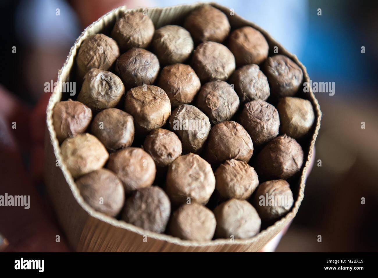 Kubanische Zigarren, Vinales Stockbild