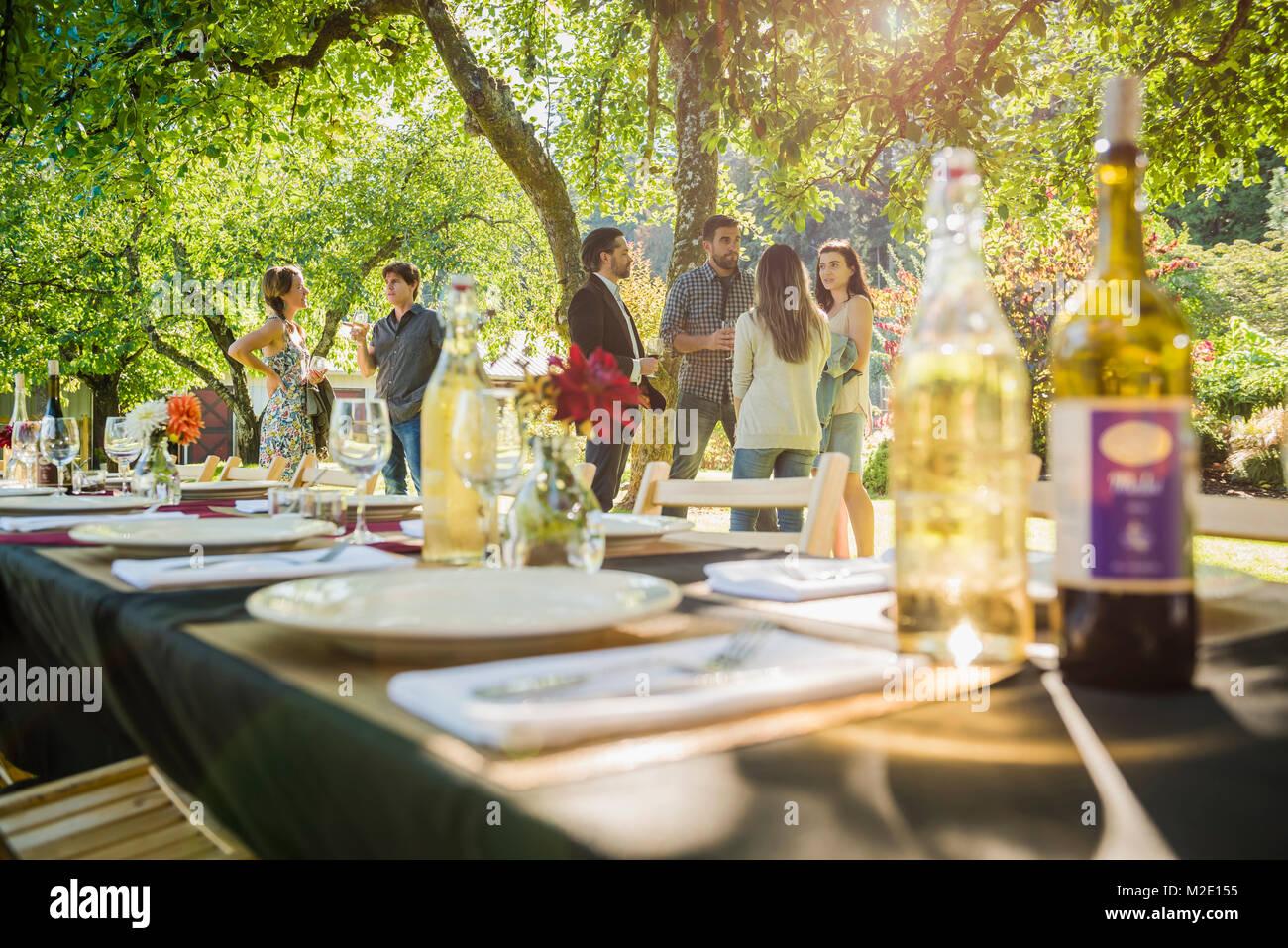 Wein Flaschen auf dem Tisch bei der Party im Freien Stockbild