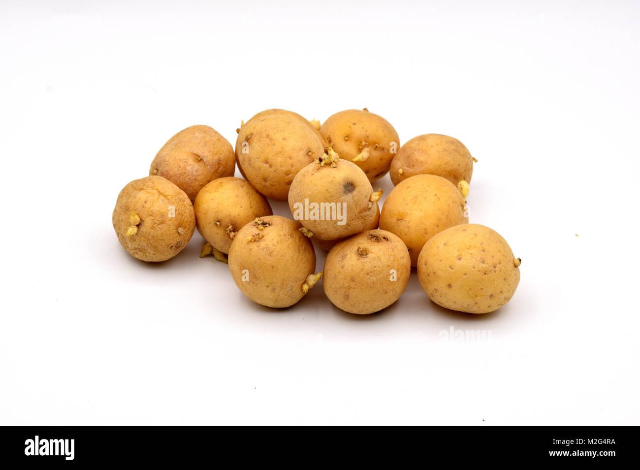 gekeimte kartoffeln essen